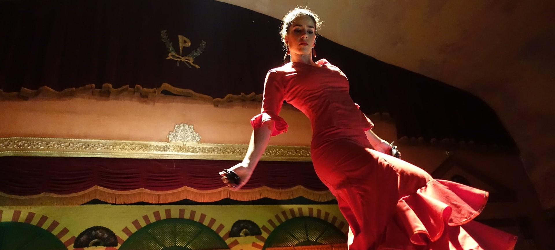 Flamenco Dance Workshops for Schools