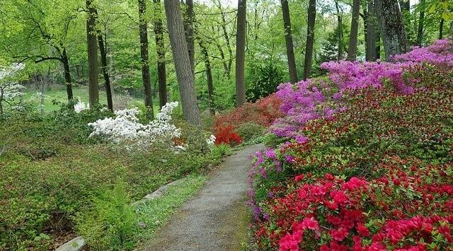 Arboretums for School Trips